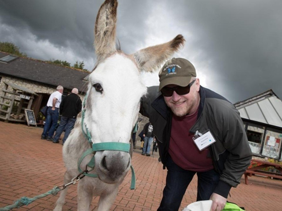 Support - Coco The Donkey